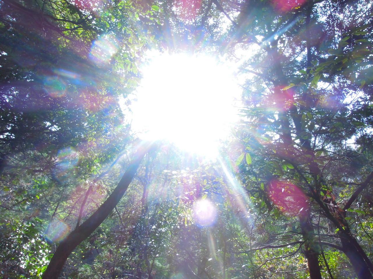 元気になる!エネルギーチャージしたい時、10秒眺めて下さい。