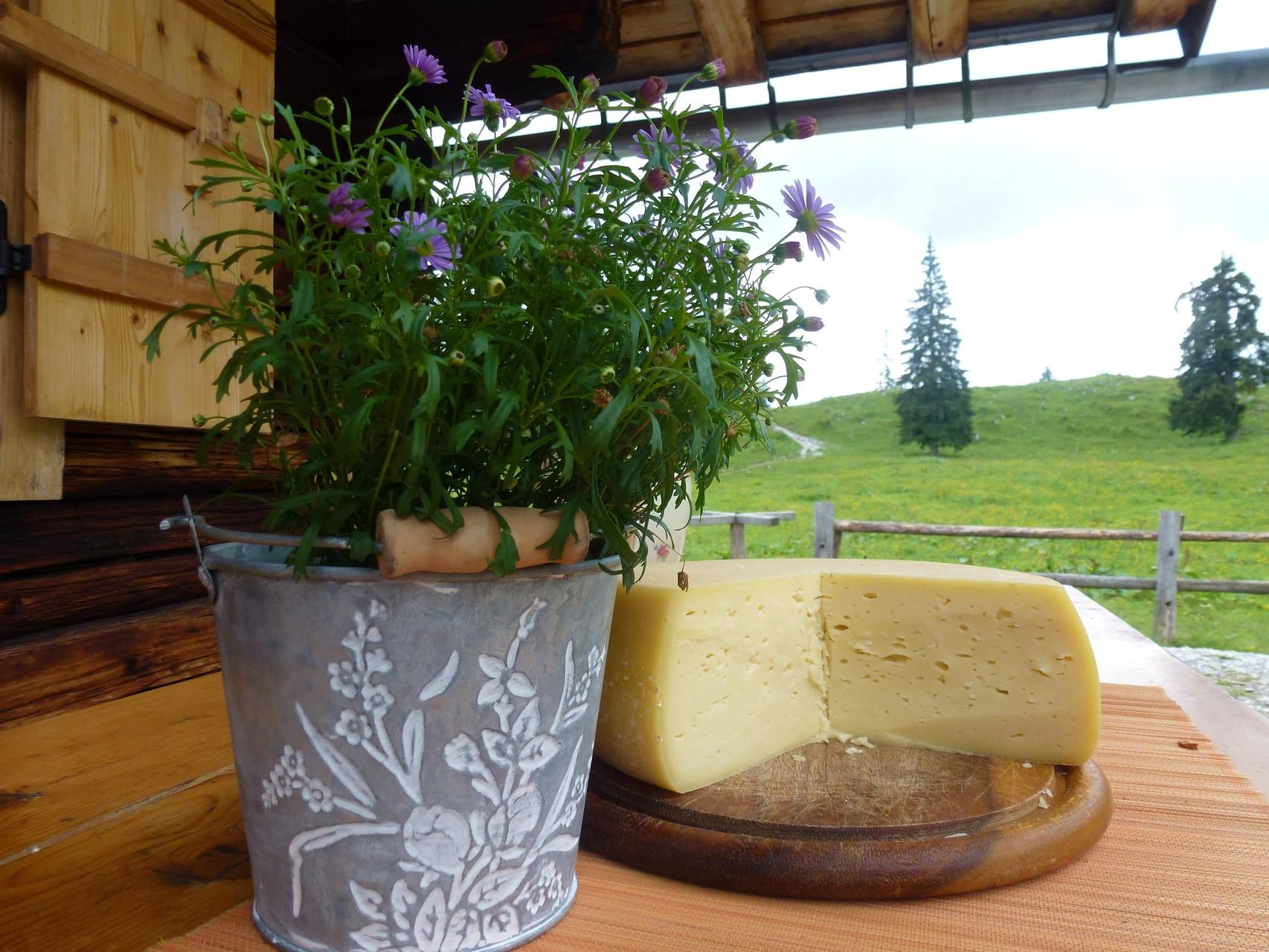 Hergestellt aus der Kräuter-Milch reift dieser Käse mindestens 7 Wochen bis er sein charakteristisches Aroma erhält, das ihn zu einem wahren Geschmackserlebnis macht