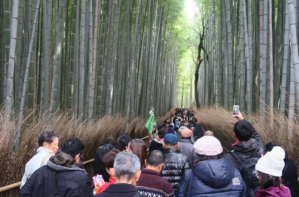京都嵐山にて