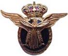 Гражданский пилот(золотой). ЦЕНА 1000 руб.