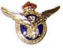 Гражданский пилот(фрачный). ЦЕНА 350 руб.