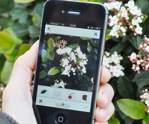 apps gratis identificar y clasificar plantas invertirenfamilia.com