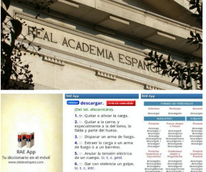 apps aplicación gratis diccionario real academia lengua drae