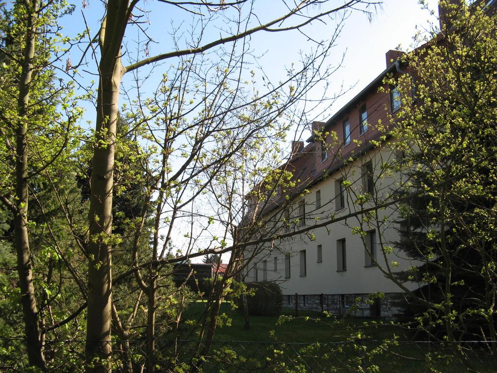 Elmweg 7-9 Garten