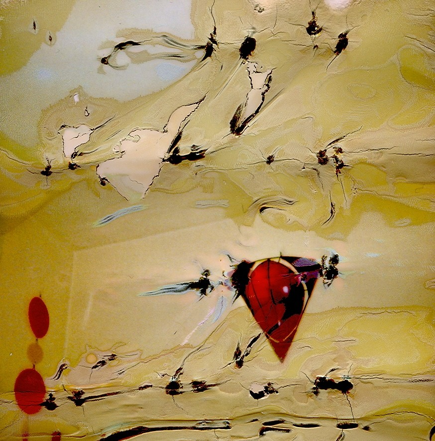 Lichtbild 22 Echter Foto-Abzug unter Acrylglas 79,7 x 80,5 cm