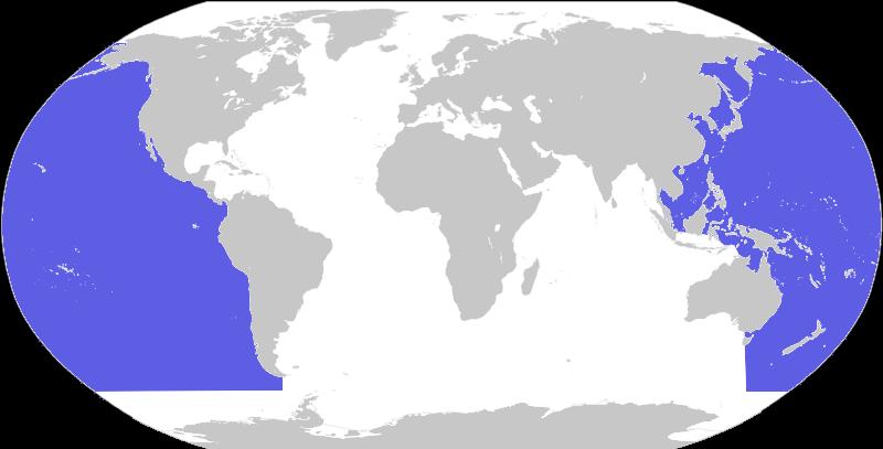 El Pacífico.