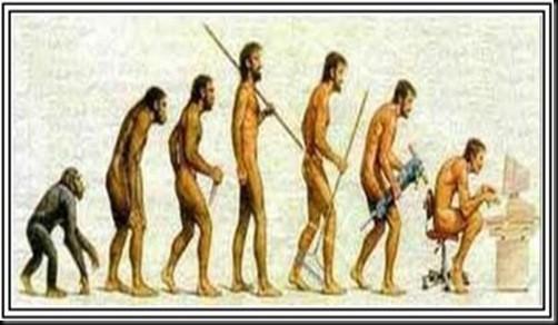 La evolución humana.