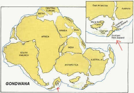 Pangea, el supercontinente original.