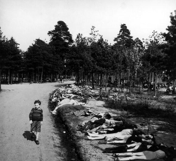 Caminando entre cadáveres en la cuneta...