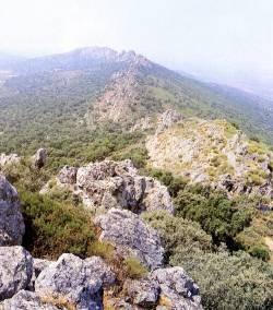 En lo alto de la Sierra de San Pedro.