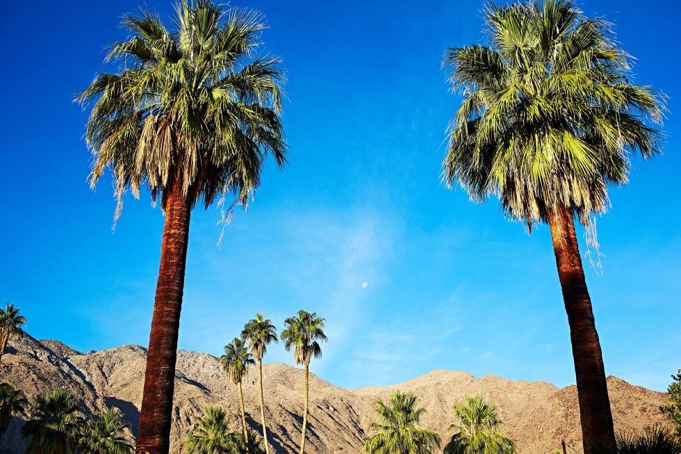"""Palm Springs, desiertos """"refugio""""en Los Ángeles."""
