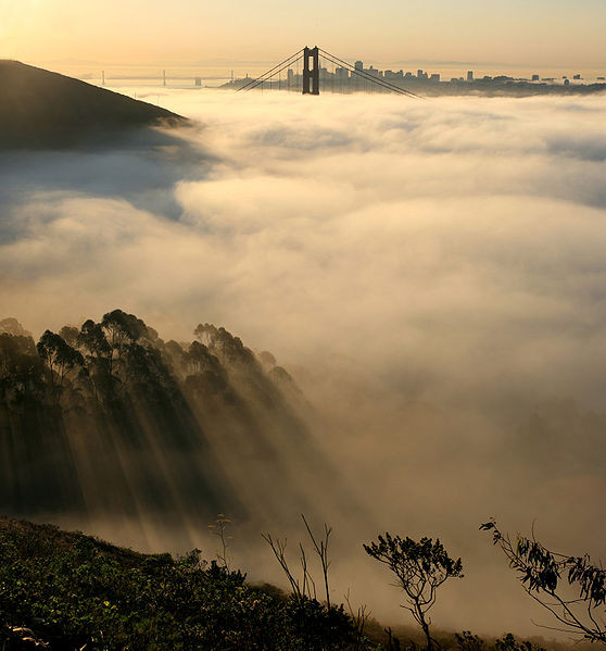 Día de niebla en San Francisco, muy frecuentes en primavera y verano.