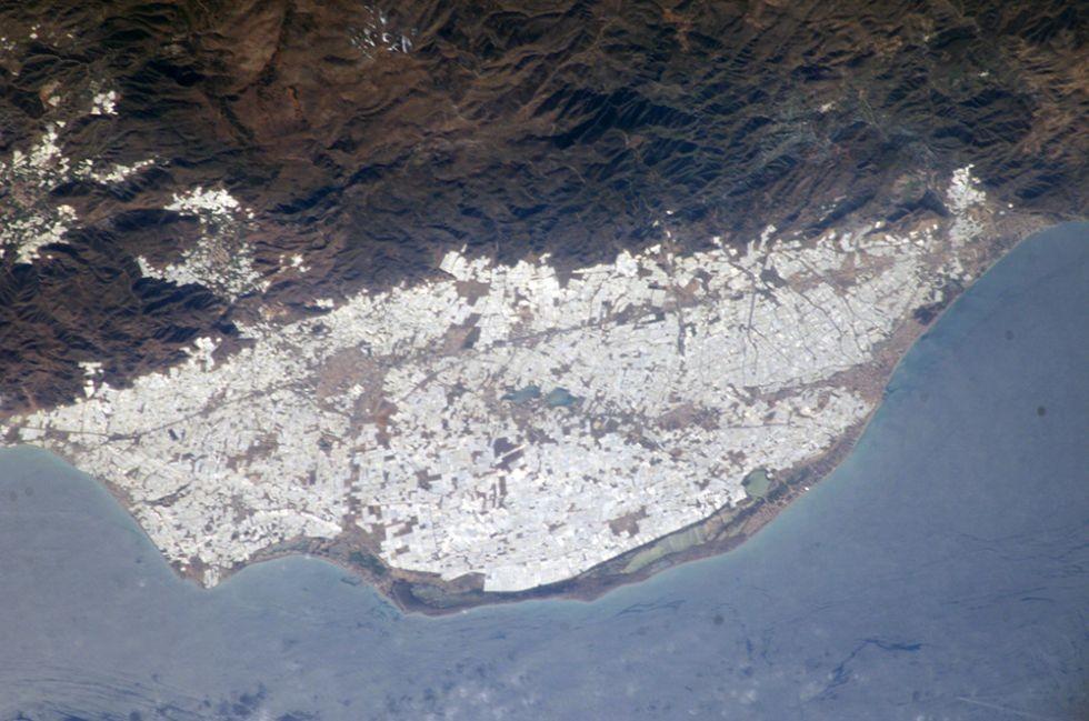 Campo de Dalias en Almería: expltación de invernaderos.