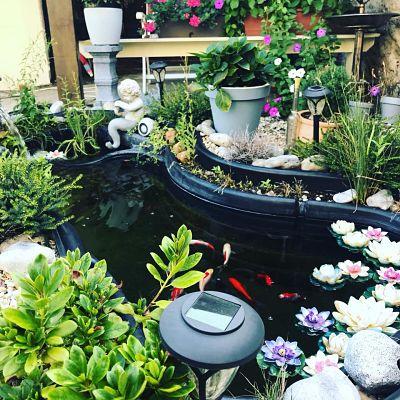 ideas para arreglar el jardin, decoracion de jardin, blog estilo de vida, como arreglar el jardin, ideas decoracion jardin, viviendo en francia,