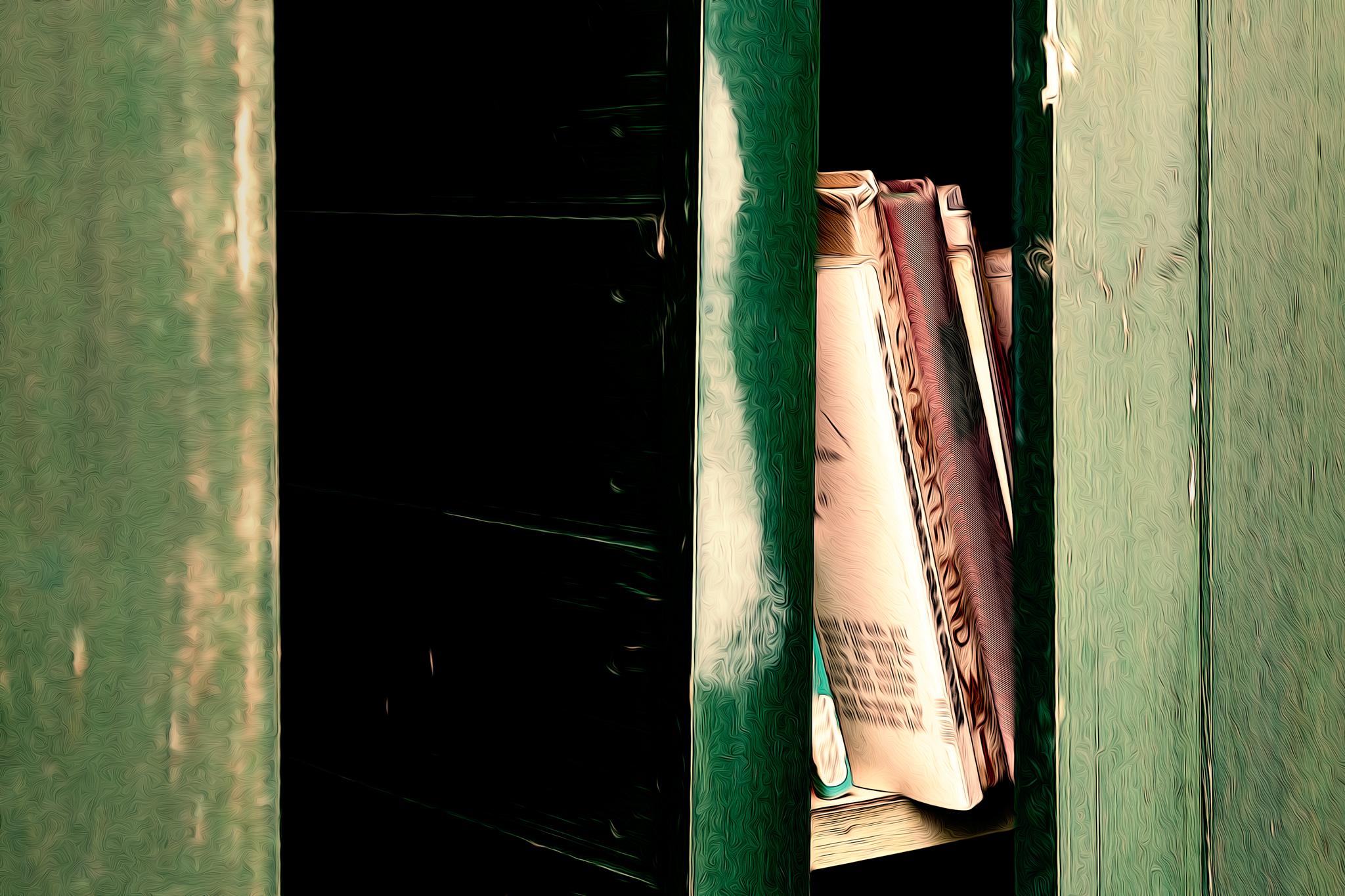 Manchmal verborgen, manchmal ganz offen werden die geheimen Bücher gelagert.