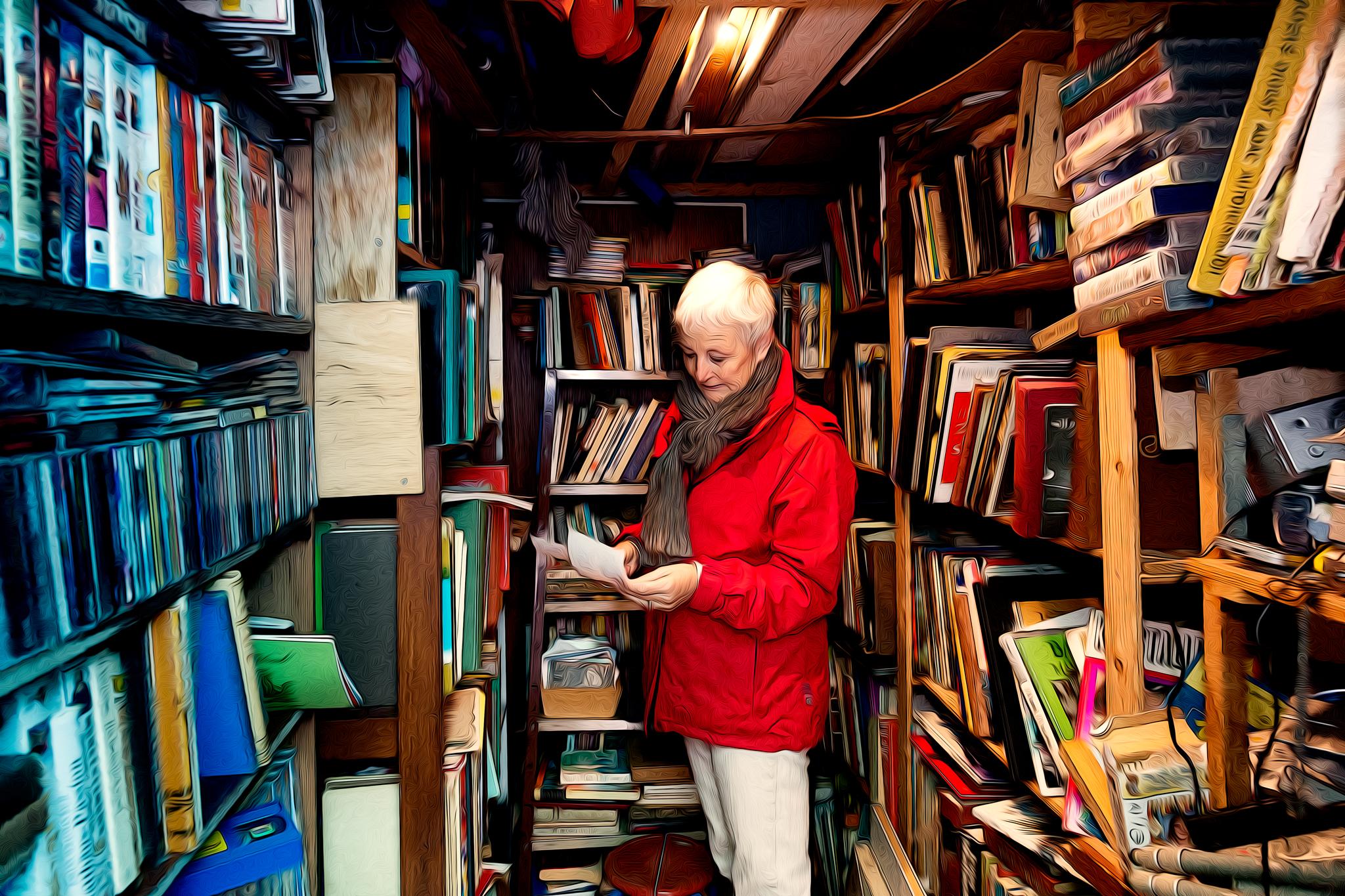 Was suchte Hüldinez im kleinsten Buchladen der Gegend?