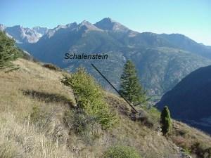 Lage Schalenstein (Nähe Weiler Sisetsch) im Gelände
