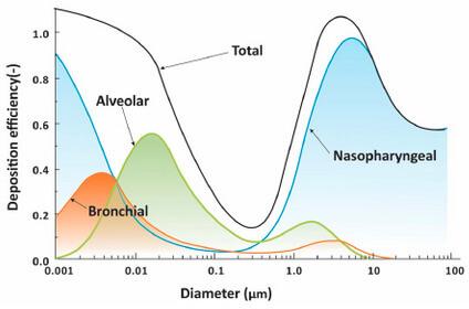 "Quelle: Wang et al., Science 373, 981 (2021) , ""Airborne transmission of respiratory viruses"""