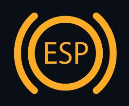 ESP SYSTEM