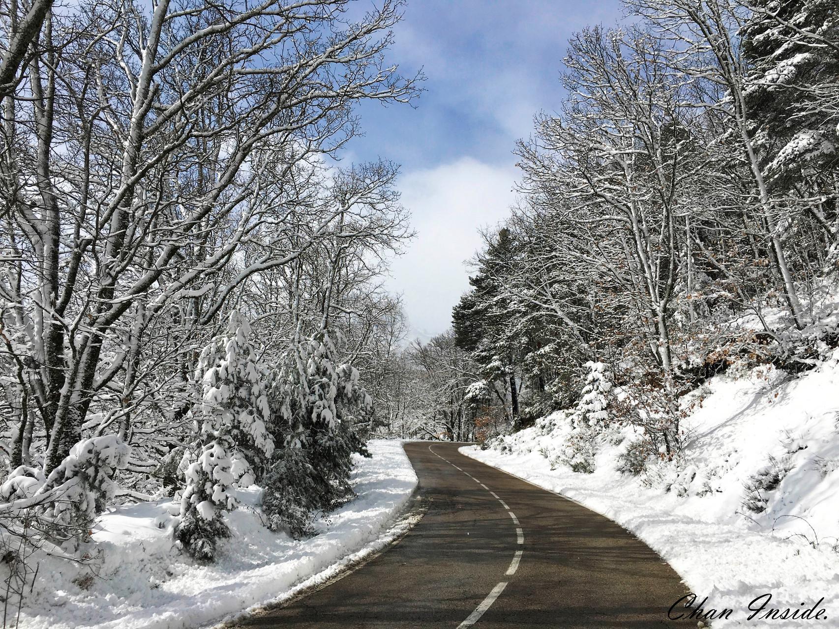 Día en la nieve.