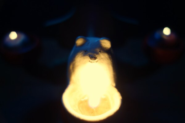 シロクマキャンドル  (Enishi Candleさん共作)