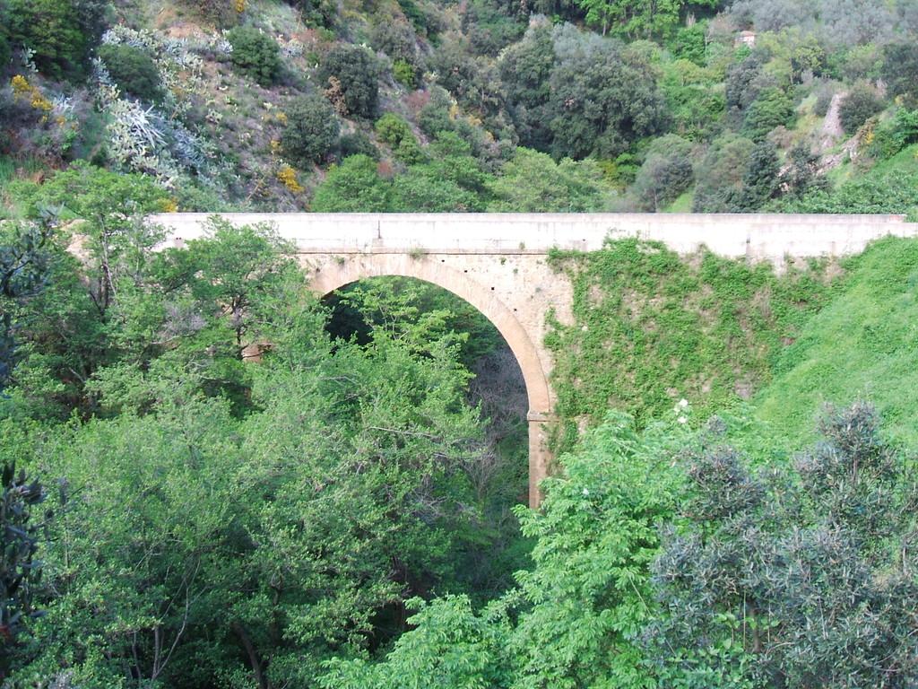 Il ponte dei due mulini ricoperto di vegetazione