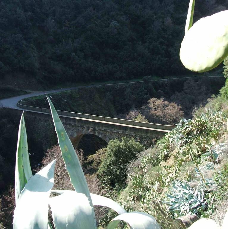 """Il ponte dei """"due Mulini"""""""