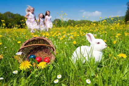 Ostern, Eier, suchen, leipzig, markkleeberg, kees, Park, Cospuden, see, cafe
