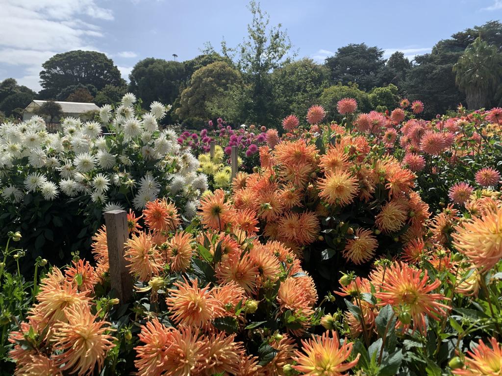 Portland Botanic Gardens