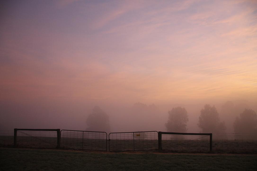 Winter Morning Magic