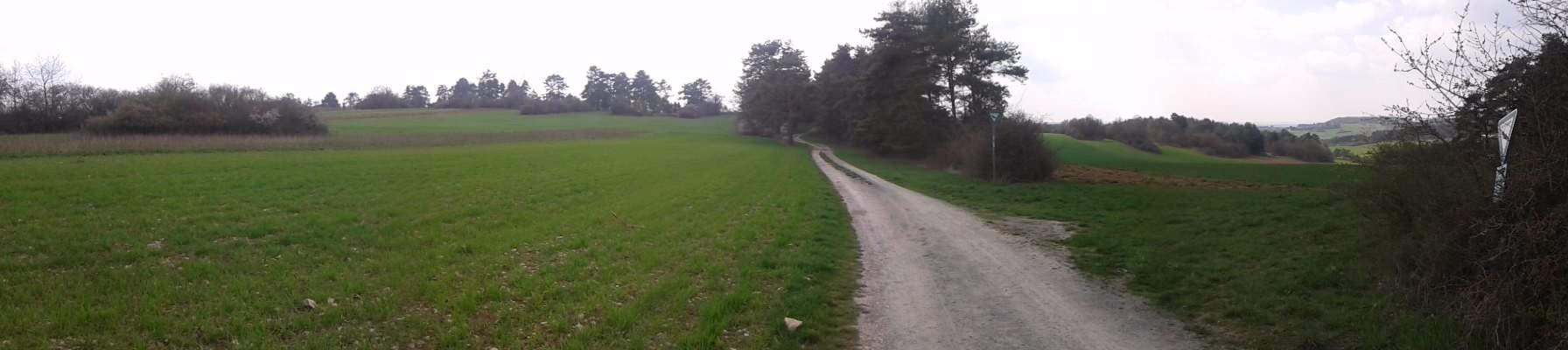 Panorama am NSG Dickenberg