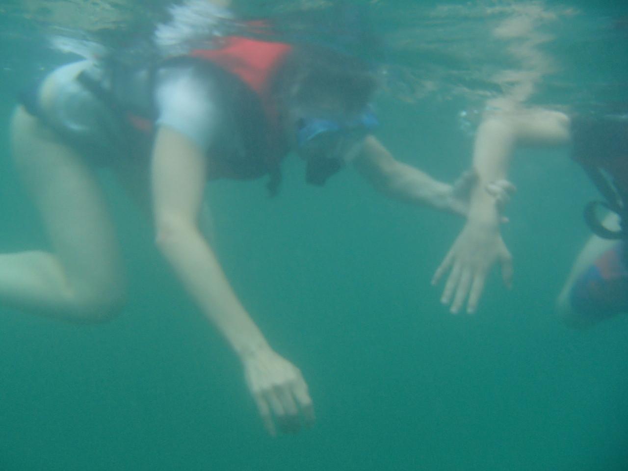 Bahía Ballena Kayaks