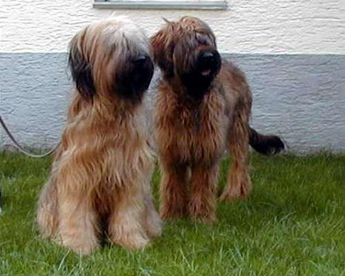 Linny und Fabi