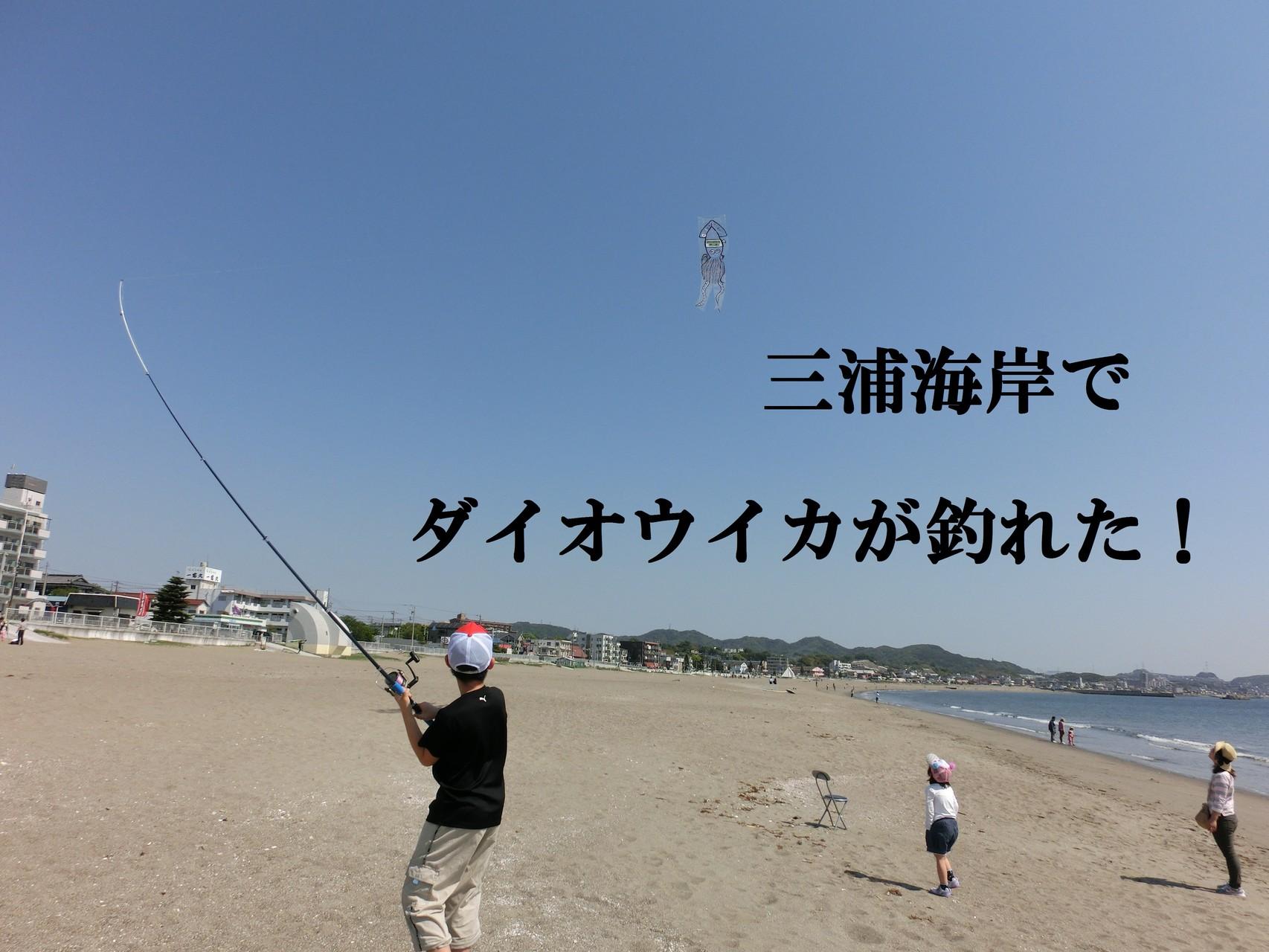 自然が残る 三浦海岸で 凄い人気でした
