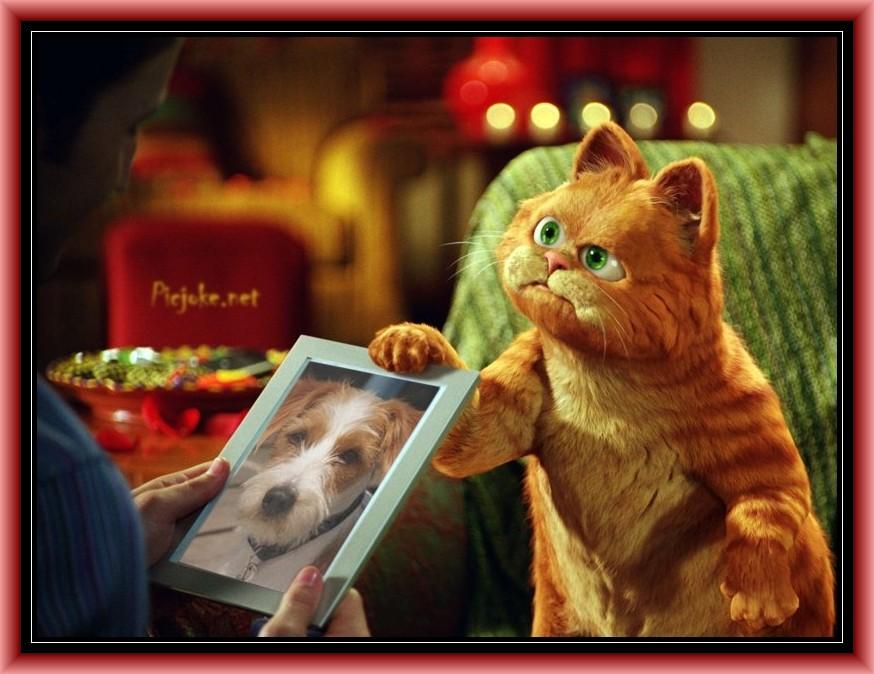 Garfield liebt mich ;-)