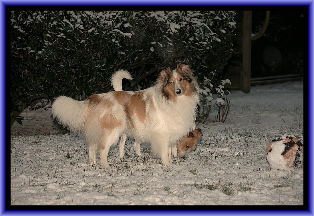 ...... ist das nicht schööööön, es schneit!