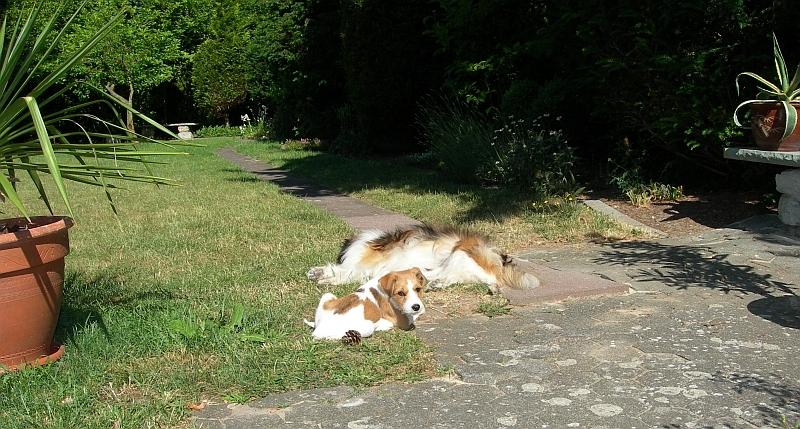 Fritz & Nicki