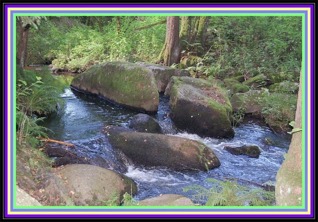 """""""Das ist hier so felsig und das viele Wasser............"""""""