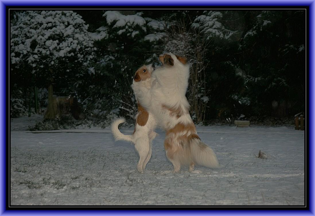 Den Schnee, Schnee, Schnee, Schneewalzer tanzen wir.....
