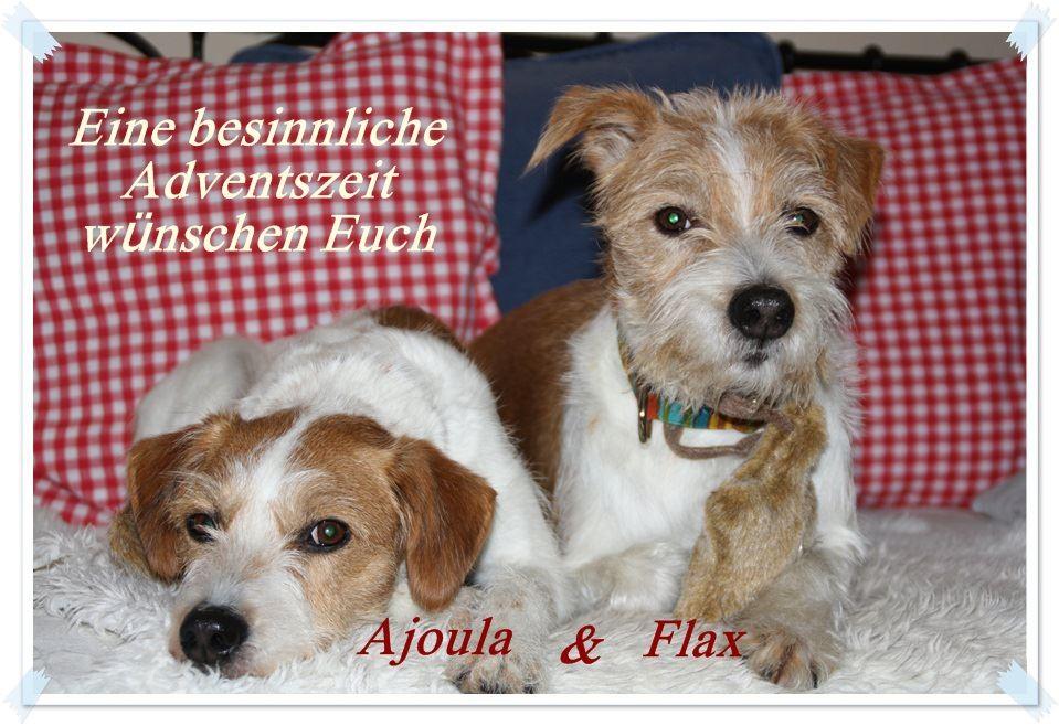 02. Dezember 2012   Ajoula & Flax wünschen allen einen schönen ersten Advent ;-)