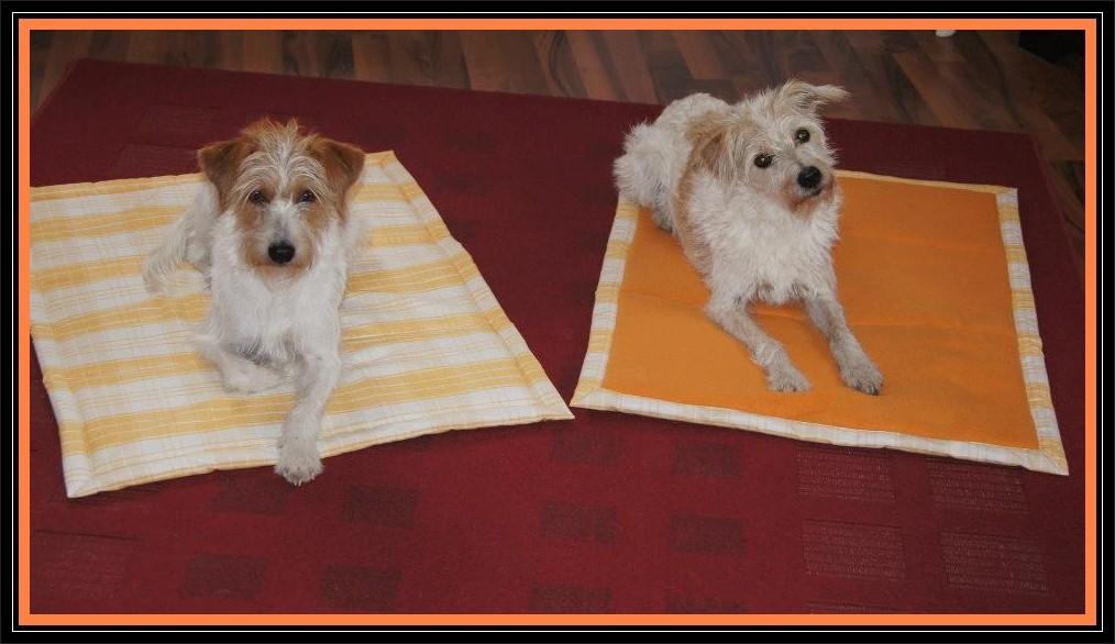 """Tara & Mandy posen auf ihren neuen """"Sonnenschein""""-Decken"""