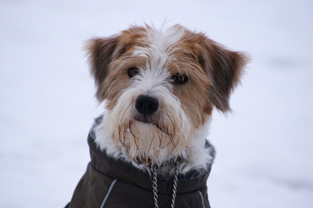 """19.02.2012  """"Brrrrr, ist das kalt draußen!"""""""