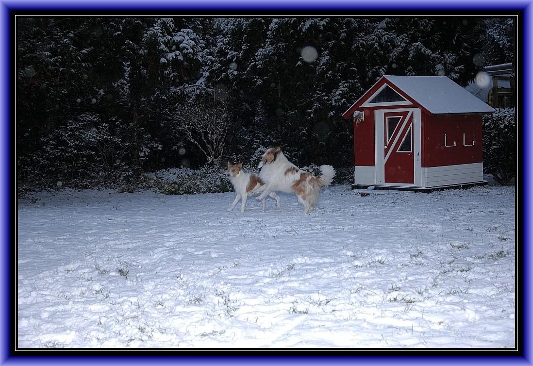 Schneeeee, endlich Schneeeee.........................