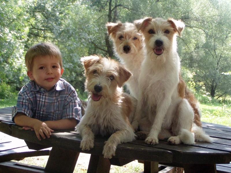 02.09.2004  Torsten und drei Hundies