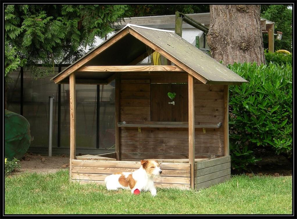30. Mai 2012, Nessie und ich hatten die Idee, aus dem Sankasten ein Hundehaus zu bauen.....