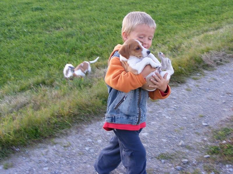 15.10.2007  Konstantin trägt Tatze, ca. 7 Wochen, beim Ausflug