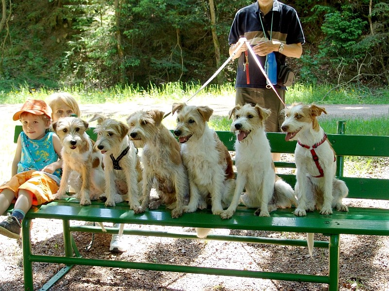 28.05.2005  Roderich, Rosmilla, Bastia, Nauka, Katla & Querula