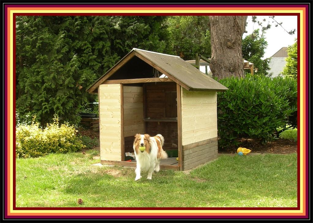 09. Juni 2012, wir hatten Holz gekauft und die Seitenwände angebaut.....