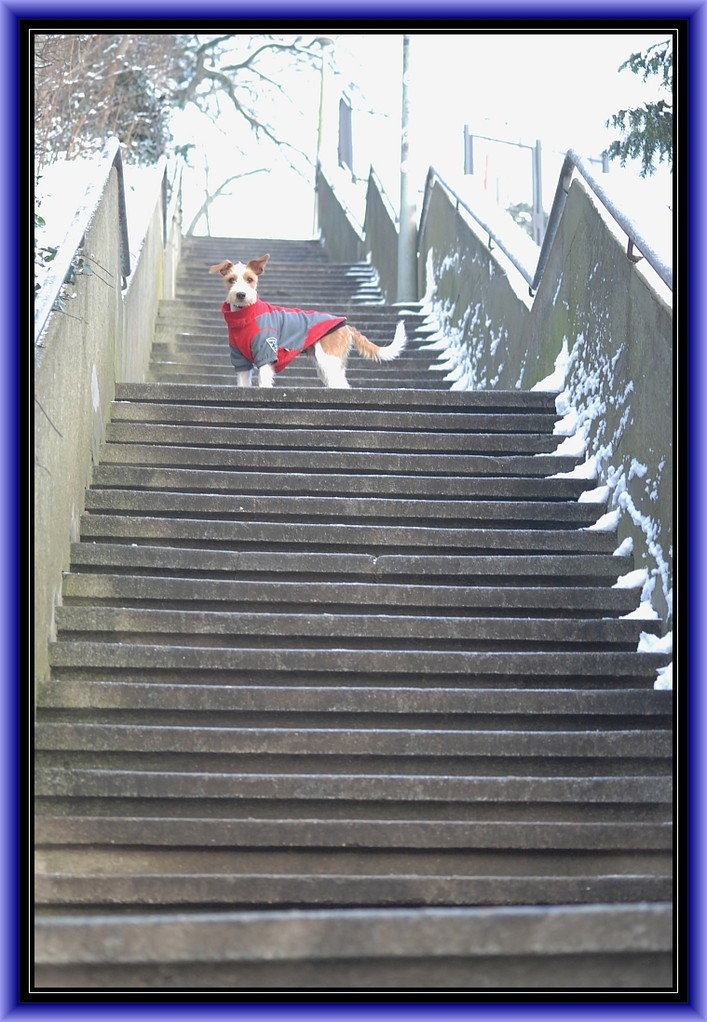 """""""Stairway to Heaven, hihi."""""""