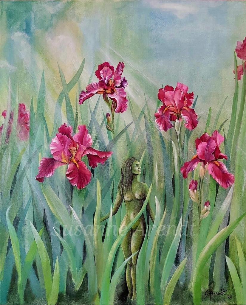 Wenn Gott die Blumen auf dem Feld so schön wachsen lässt, wird er sich dann nicht erst recht um dich kümmern?
